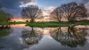 Psychosomatische Beratung - Bäume spiegeln sich im See